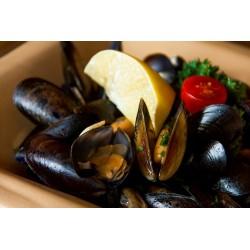Fehérboros feketekagyló fokhagymás olívában 0,5 kg friss kenyérrel